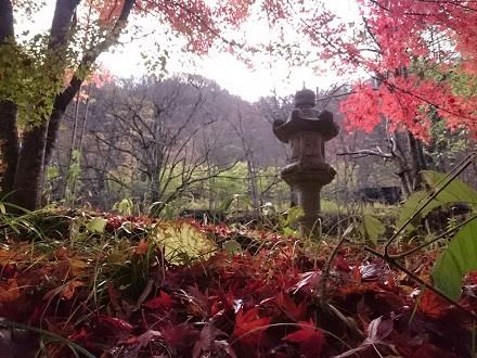 湯西川温泉 揚羽〜AGEHA〜(平家の庄) 紅葉の風景