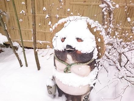 「平家の庄」の入り口にいた雪タヌキ