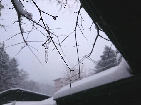 雪が降り続く湯西川温泉の朝 揚羽〜AGEHA〜