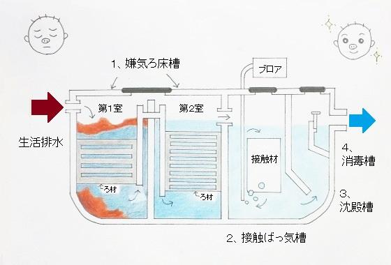 合併浄化槽の仕組み(嫌気ろ床接触ばっ気方式)