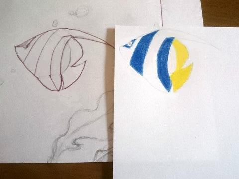 色鉛筆で色をぬる