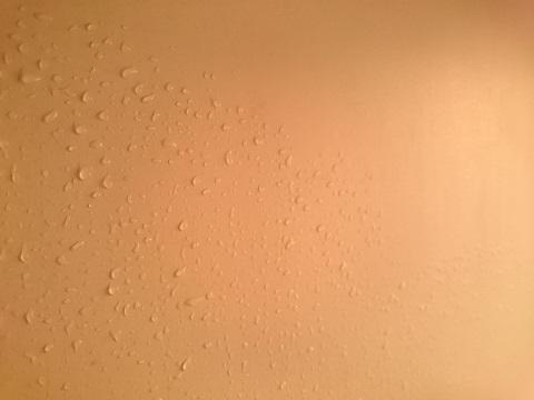 お風呂の壁