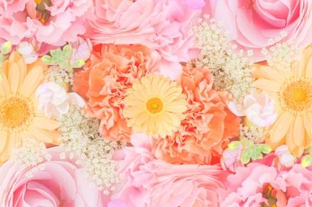 ピンクとオレンジの花の嵐