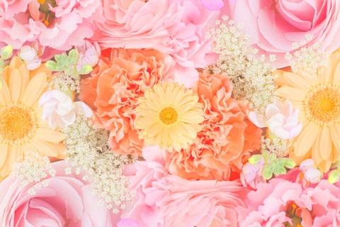 ピンクとオレンジの花