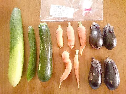 地元で採れた新鮮野菜(湯西川水の郷)