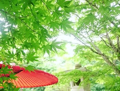湯西川温泉 揚羽 ~AGEHA~ (平家の庄)の庭はとても気持ちがいい