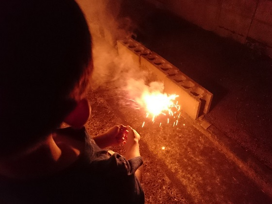 花火と甥っ子