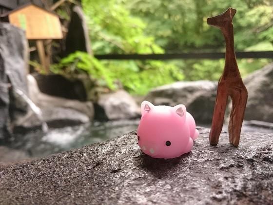 露天風呂のブーさんと私