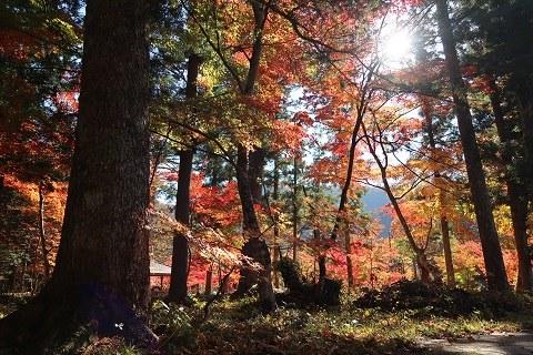 湯西川温泉の紅葉