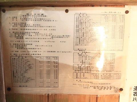 湯西川温泉 薬師の湯 温泉分析書