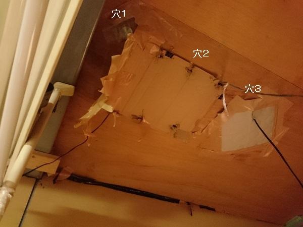 コウモリ駆除のため天井に開けた穴