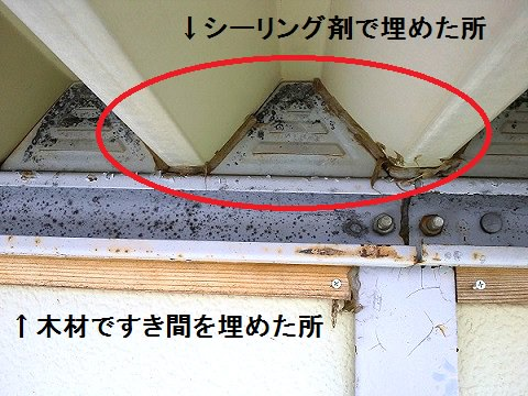 コウモリ駆除のため倉庫のすき間を埋めたところ