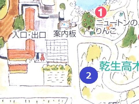 ヒマラヤの青いケシが咲いている場所 上三依水生植物園 エリアマップ