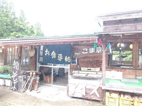 こま草の外観 栃木県日光市上三依