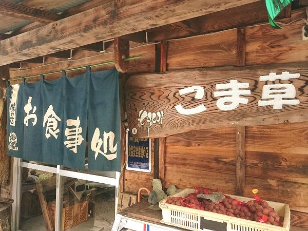 栃木県日光市上三依 こま草