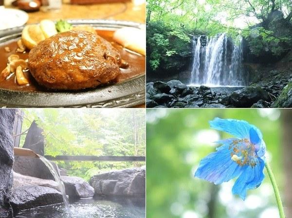 グルメ・観光・温泉を楽しんだ1泊2日のドライブ旅行