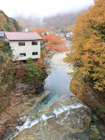 天楽堂つり橋の下流(秋)