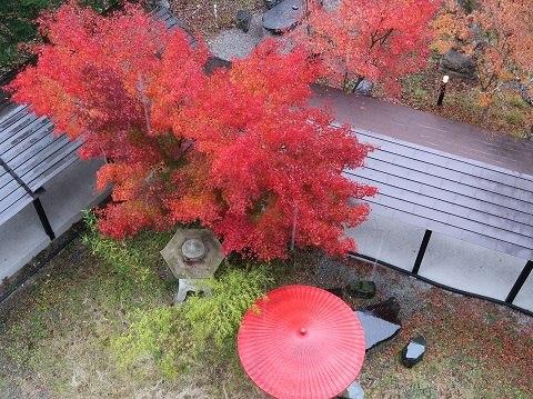 湯西川温泉 揚羽(平家の庄)の紅葉