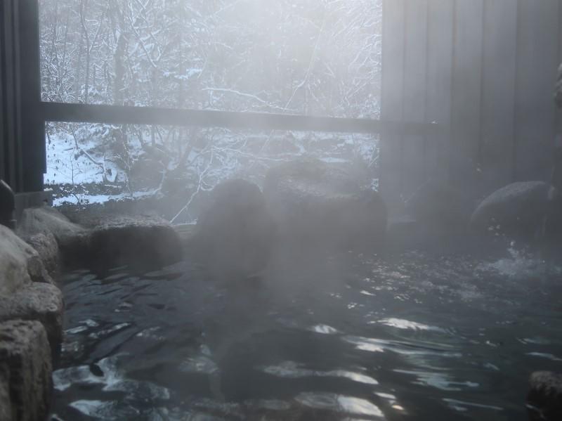 朝の貸切露天風呂。湯西川温泉「揚羽」