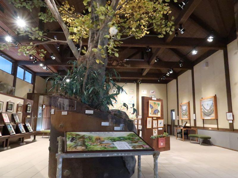 蝶の美術館 湯西川水の郷