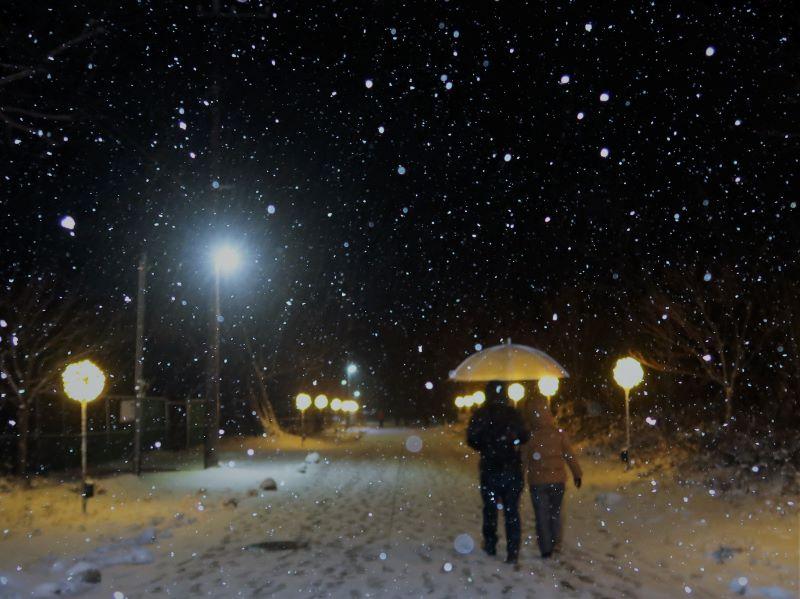 雪降る湯西川温泉かまくら祭