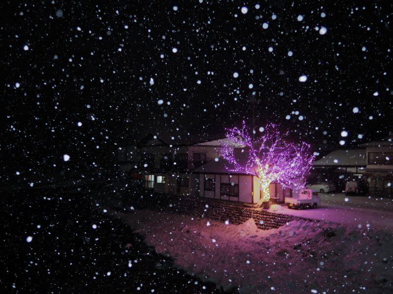広角 湯西川温泉街に降る雪