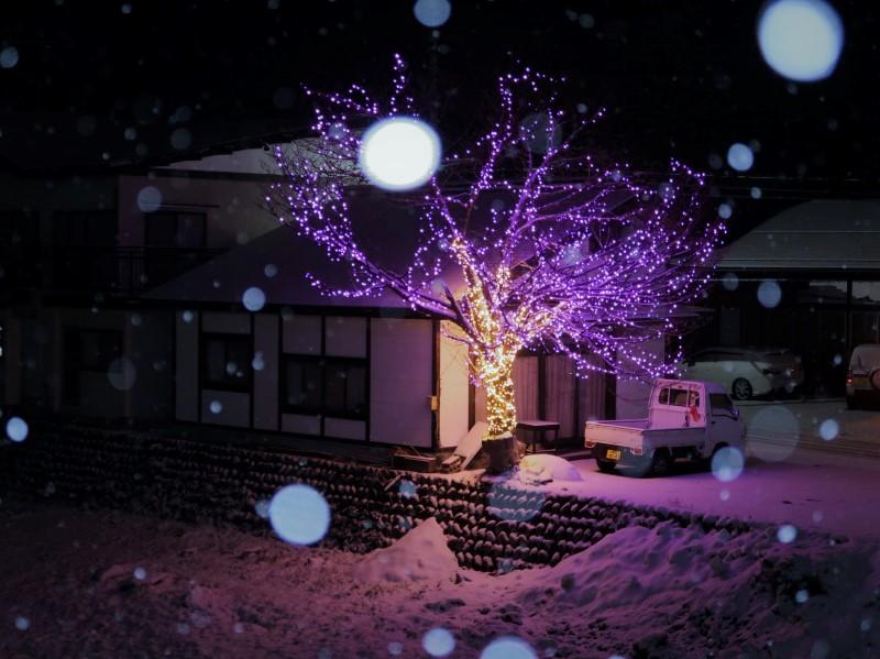 望遠 湯西川温泉街に降る雪