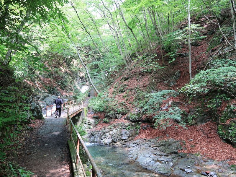 太閤下ろしの滝へと続く遊歩道
