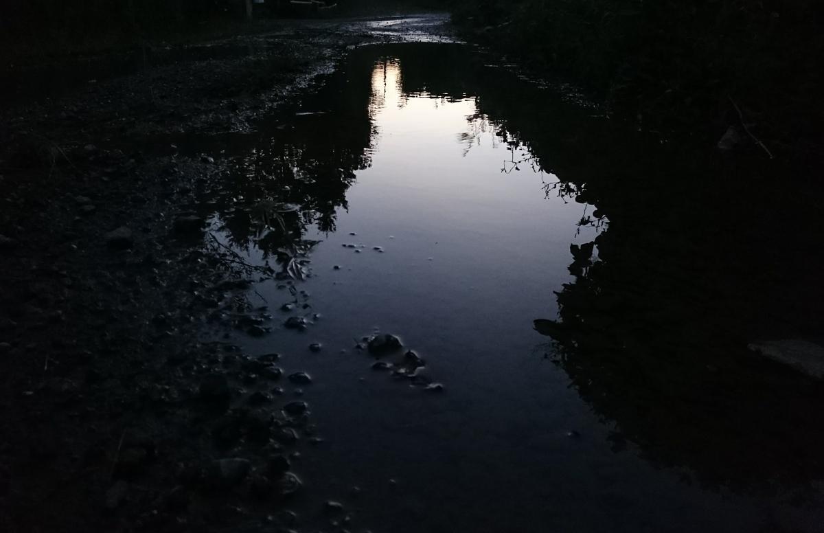 夕暮れの水たまり