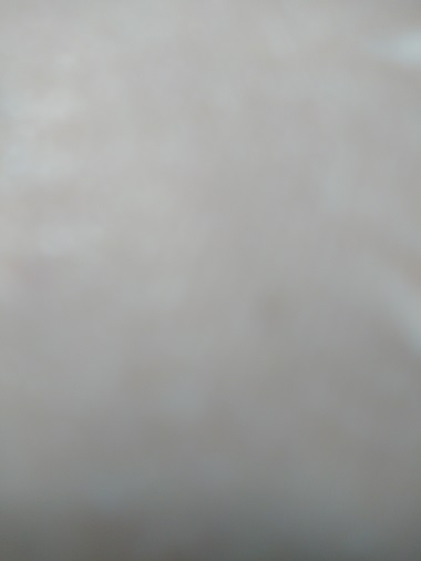 f:id:bubuhikotan:20200329224826j:plain