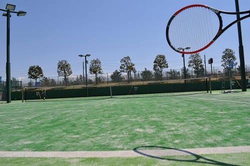 テニス フォアボレー