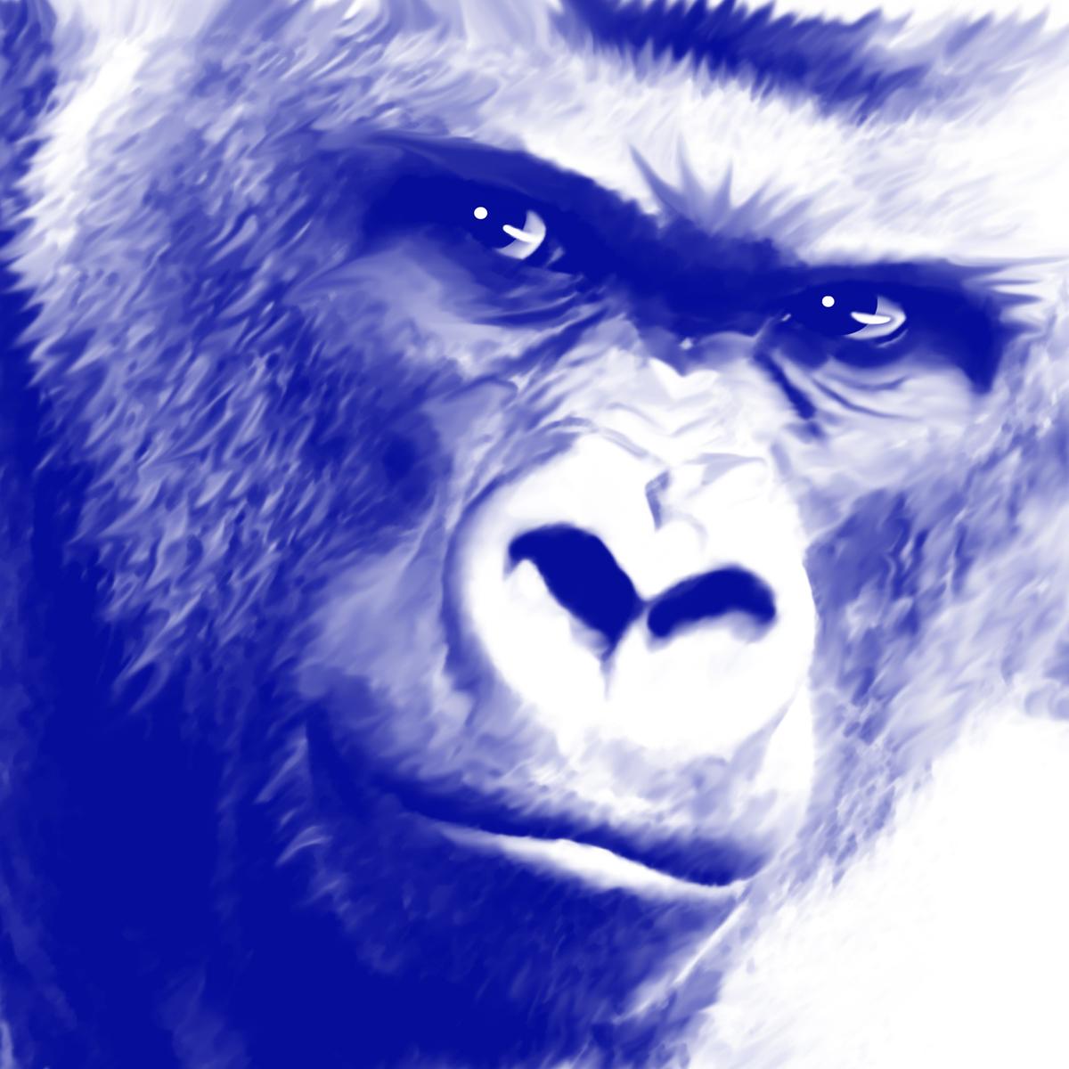 キングコングの画像