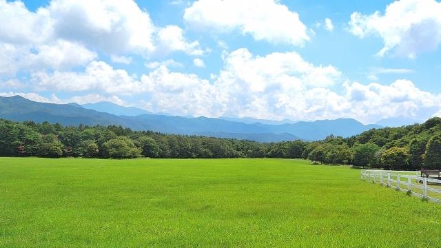 成田 ゆめ 牧場 キャンプ 場