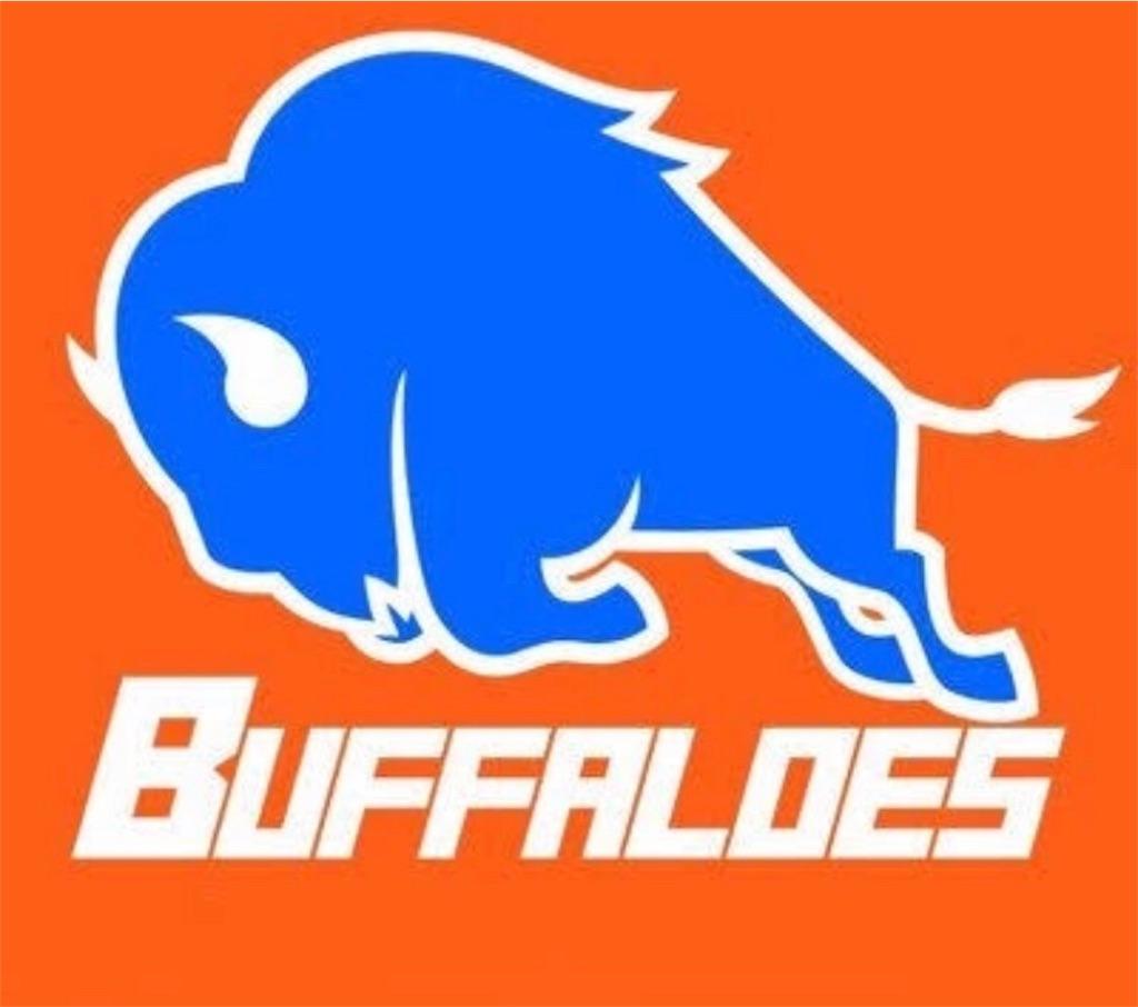 f:id:buffaloesblog:20190215075826j:image