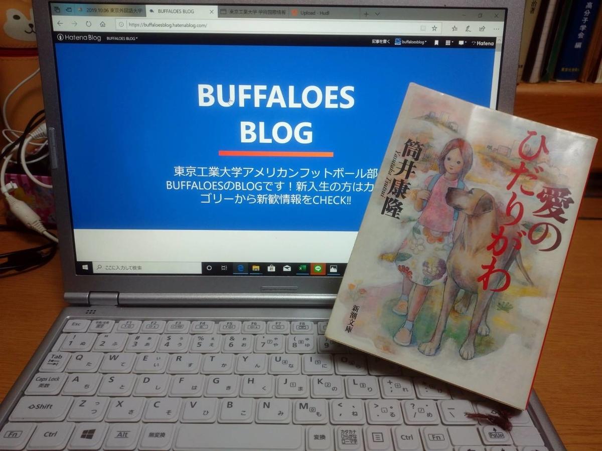 f:id:buffaloesblog:20200201230143j:plain