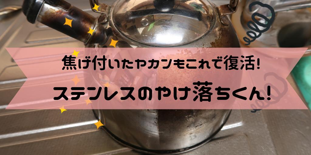 f:id:buffet-hato:20190105153153p:image