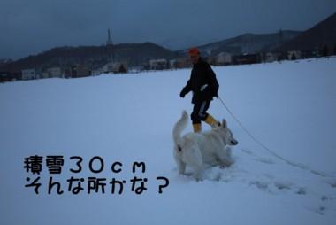 f:id:buhi84shin:20110402171951j:image:left