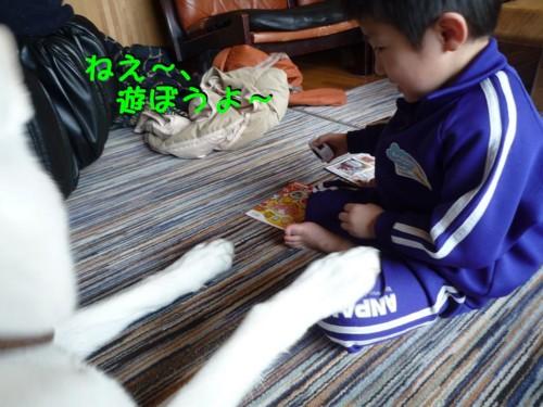 f:id:buhi84shin:20110410103642j:image:right