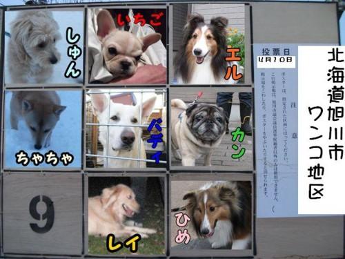 f:id:buhi84shin:20110410173819j:image:right