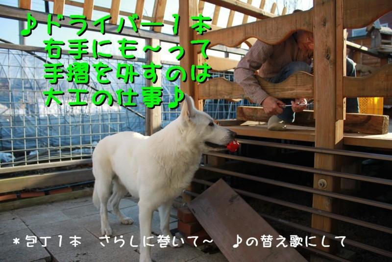 f:id:buhi84shin:20110414162758j:image