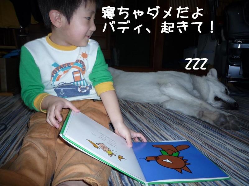 f:id:buhi84shin:20110415162335j:image
