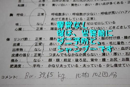 f:id:buhi84shin:20110416124444j:image:left
