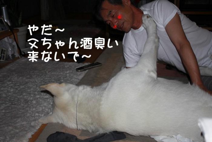 f:id:buhi84shin:20110425201433j:image:right