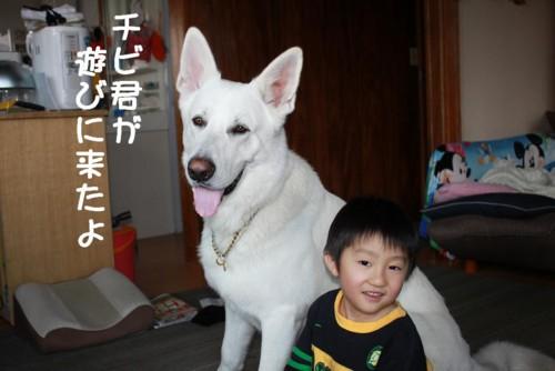 f:id:buhi84shin:20110429165038j:image:right