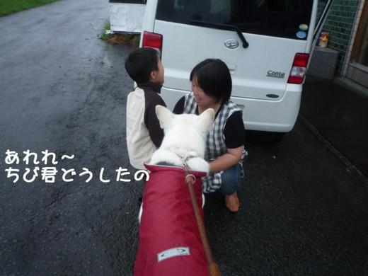 f:id:buhi84shin:20110714172956j:image:left
