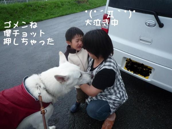 f:id:buhi84shin:20110714172959j:image:right