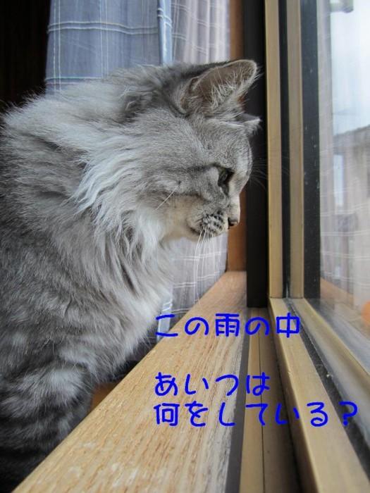 f:id:buhi84shin:20110715213916j:image:left