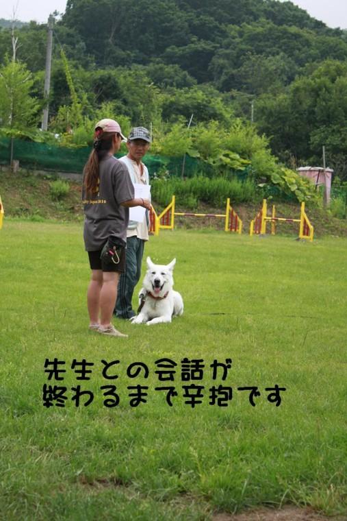 f:id:buhi84shin:20110730104023j:image:left