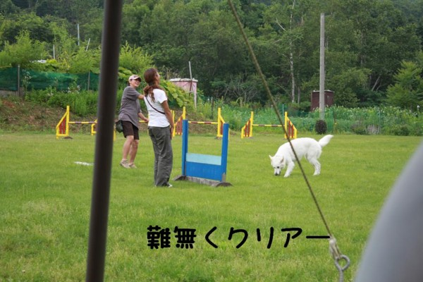 f:id:buhi84shin:20110730110249j:image:right