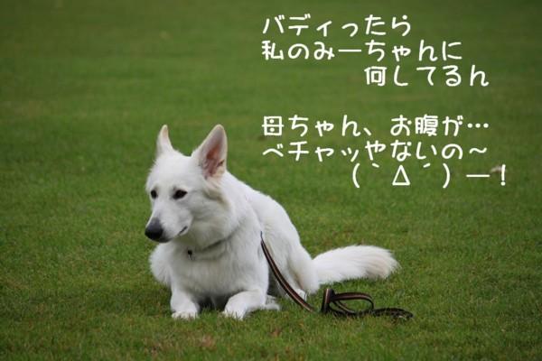 f:id:buhi84shin:20111001100453j:image:right